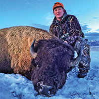 grand teton national park buffalo hunt